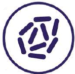 INADINE-Bacteria.png